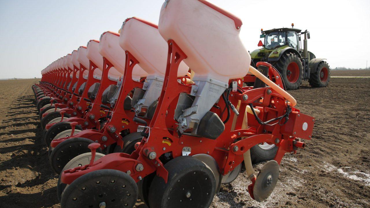 Prednosti i mane rane setve kukuruza